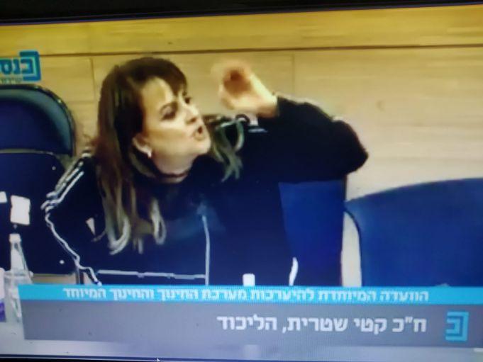 קטי שיטרית בוועדה,צולם מערוץ הכנסת