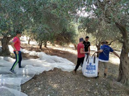 אלופים: התנדבו למסוק זיתים מפני שבחים