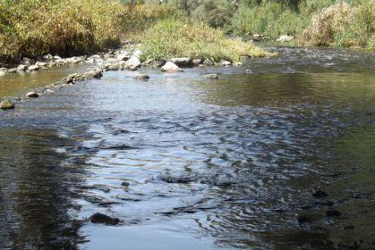 השבת מים לנחלים