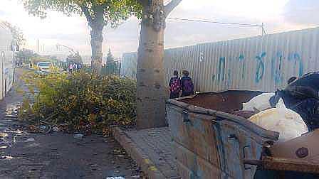 ילדים מדלגים על ענפים וגזם בדרך לבית הספר