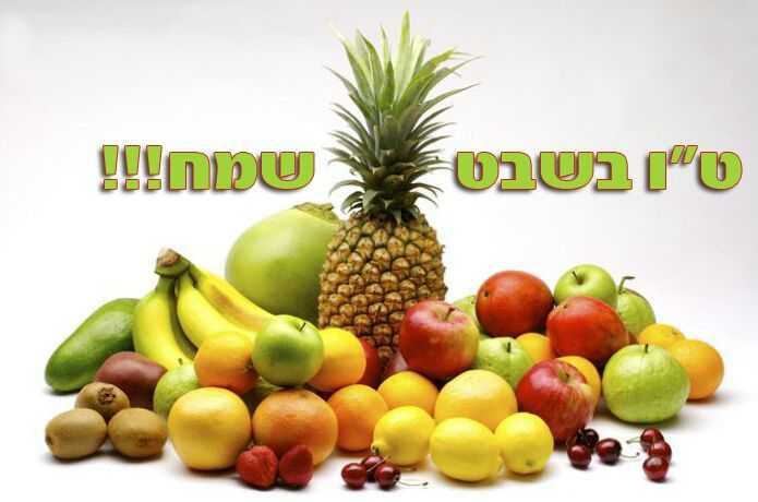 פירות טו בשבט
