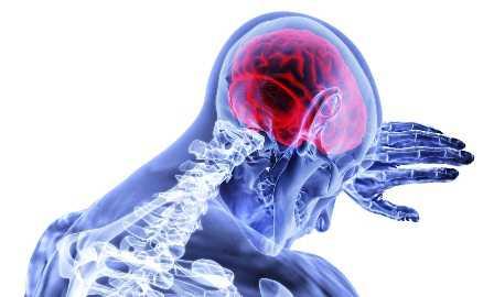 הזדקנות המוח